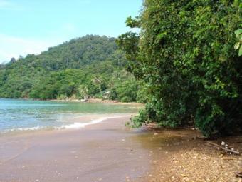 70m Beach Front Land Ko Lanta Yai