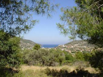 PLOTS FOR SALE Corinth