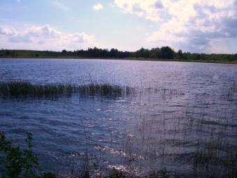 Land near Alausai lake, Moletai Moletai District, Balninkai