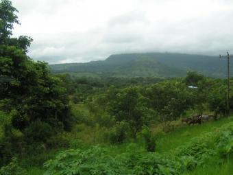 Land for sale Burka, Tanzania Arusha