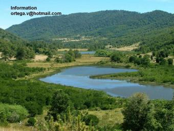 sell land with water in chile/ Villarrica