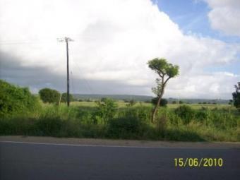 116 Plots for Sale in Vipingo Mombasa