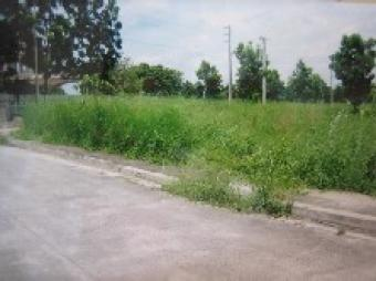 3 Lots behind comm`l at Beverly San Fernando