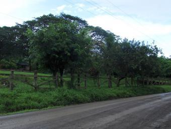 Property for sale in Tola!!! Tola