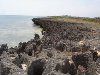 52 ACRES BEACH PLOT Bofa,kilifi,mombasa
