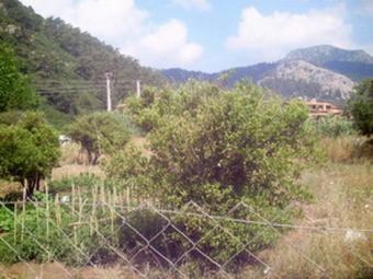 Land in Nature Beldibi Marmaris