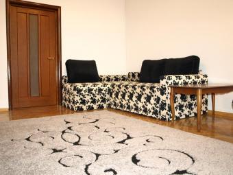 Cozy apartment in Kiev Kiev