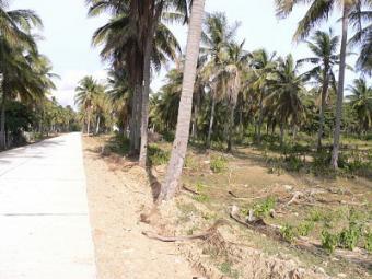 Land for sale Hua-Hin Pranburi Prachuap Khiri Khan