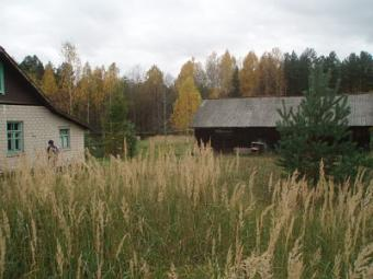 House and plot of land 0,24 ha Zilupe