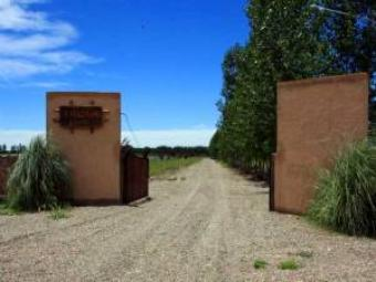 12 acres Premium Vineyard Area Mendoza