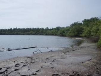 Lake view Land for sale Lombok