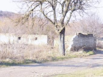 Rural property for sale! Shumen
