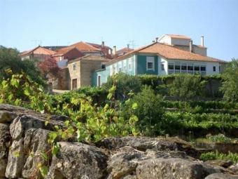 Farm - Banks of Douro River Porto