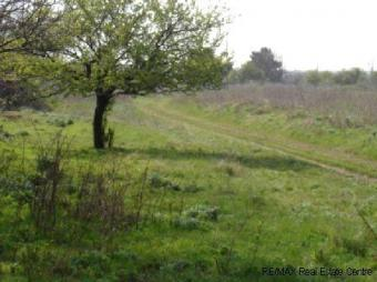 A picturesque plot of land Generl Toshevo