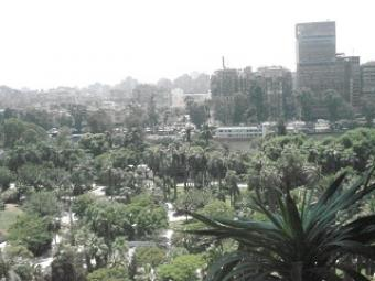 Apartment for rent in Zamalek Zamalek