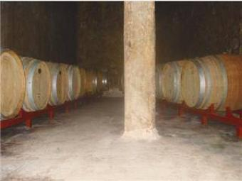 Winery for sale in Mendoza Chacras De Coria Lujan De Cuyo