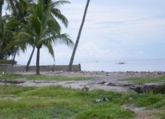 Beachfront Lot for Sale Bais City