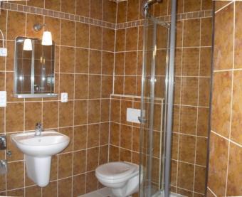 Flats 1+kk for rent near centre Pilsen
