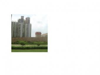 Appartment for sale in gurgaon Gurgoan