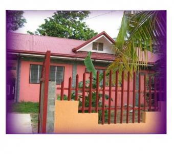 good house and lot forsale Tulang Getafe Bohol
