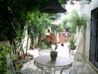 Apart in Alanya (privat garden) Alanya