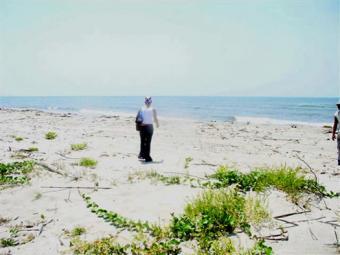 Oceanfront Lots For Sale La Ceiba