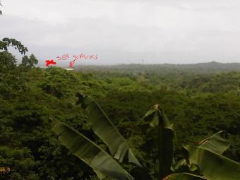 Panoramic View,20 Acres Toco Toco