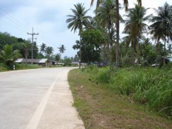 Flat Roadside Land Plot Ko Lanta Yai