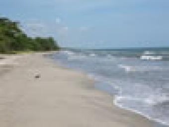 21 beach front lots for sale La Ceiba