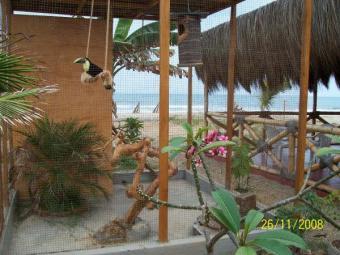 HOTEL  RESTAURANT & BAR ON  SELL Zorritos Beach