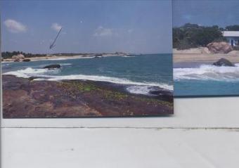 Yala Ocean Hotel/Resort Yala And Bundala