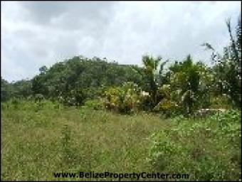 # 2002 - 14.2 ACRES OF LAND - Ce Belmopan