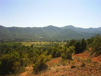 Beautiful Land in Chile Linares