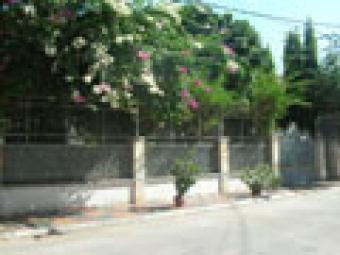 Villa For Rent Phnom Penh
