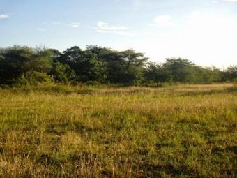 land plot for sale Njiro Arusha Arusha