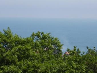 PLOT OF LAND FOR SALE Varna