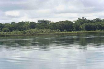 Land for sale in Lake Peten Itza Shore Of Lake Peten Itzaflores