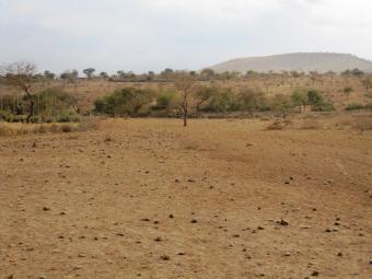 36-acres KIBARANI Kibarani