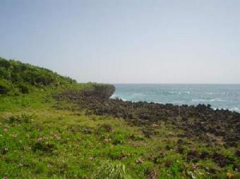 Magnificent ocean front lot Cabrera
