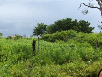 !!!Sale of Land in Belen TownShi Belen, Rivas