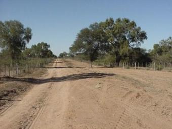 30.000 Has en Chaco Paraguayo Colonia Defensores Del Chaco