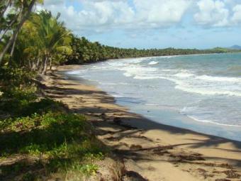 Palmas del Mar MLS LISTINGS Humacao
