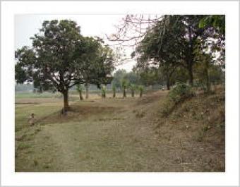 PLOT SELL Dhaka
