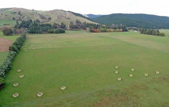 COUNTRY LIFESTYLE Marlborough NZ Blenheim