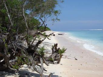 Beachfront Plot / Gili Trawangan Gili Trawangan