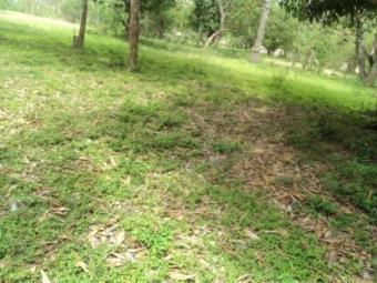 890 acre plot for sale Mombasa